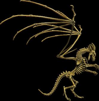 Дракон скелет