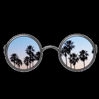очки с пальмами